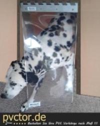 Hundeklappe Hundetür 30 x 40-60 cm